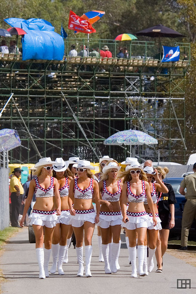 The Clipsal 500 Grid Girls