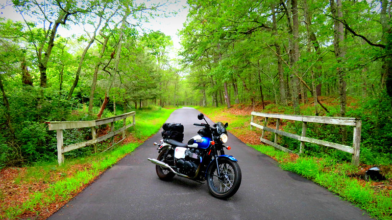 long island motorcycle blogger fuzzygalore - triumph bonneville