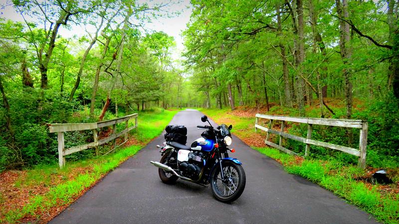 long island motorcycle blogger fuzzygalore - triumph bonneville