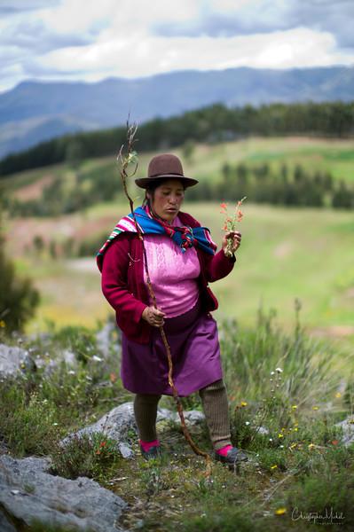 20120329_Cuzco2 -Sacsayhuamán, temple of the moon, tambo machay_3006.jpg