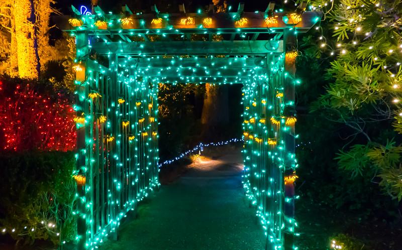 12-05-2019 Shore Acres Christmas Light Show (13 of 55).jpg
