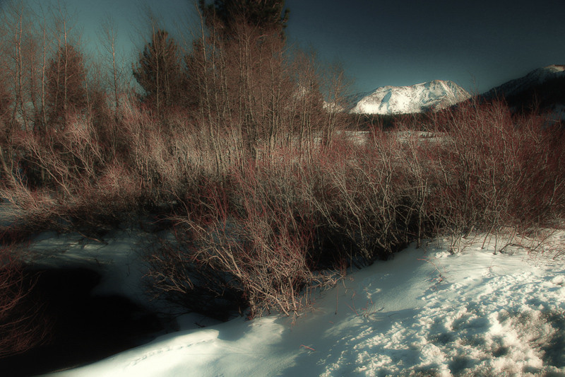 feb 19 - mountain.jpg