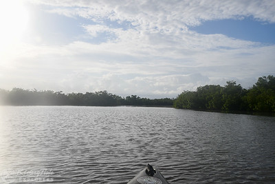 October 20th Kayaking Adventure!