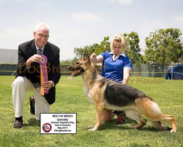 German Shepherd Dog Club of America - May 2014