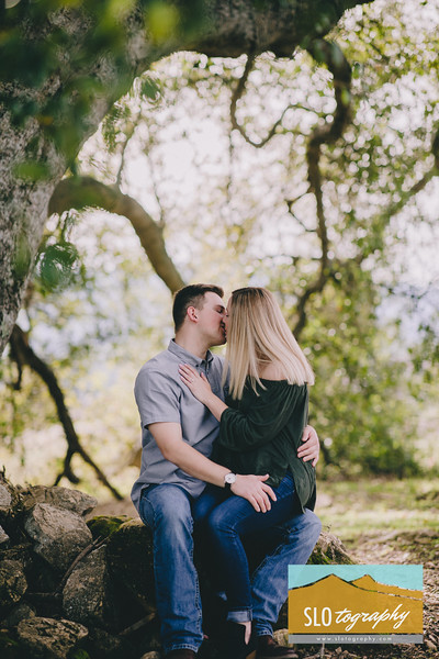 Taylor+Clark ~ Halter Ranch Proposal