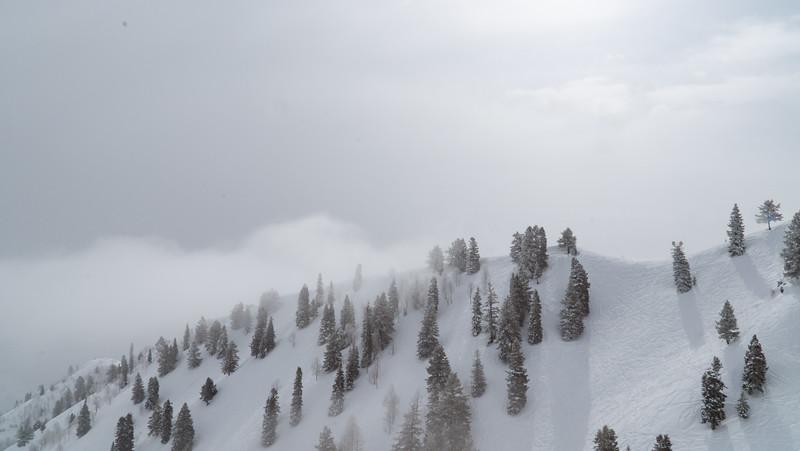 Sundance-4.jpg