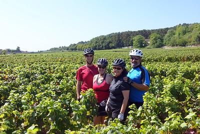Biking in Burgundy, 9/7/2015 - 9/12/2015