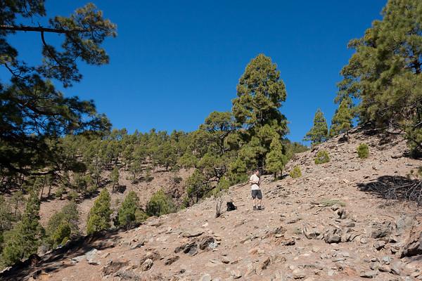 2007 Tenerife