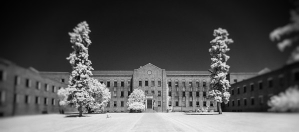 Willard Asylum ~ Willard, NY