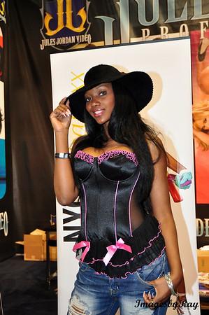 AVN / AEE Expo 2010