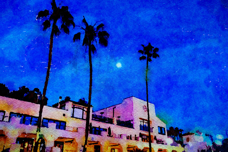 February 27 - 3 Palm trees, a building and an almost full moon, Santa Monica, CA.jpg