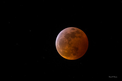 Wolf Moon January 2019