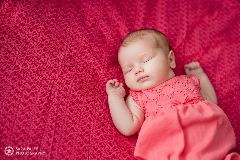 newborn baby lifestyle portraits in poco