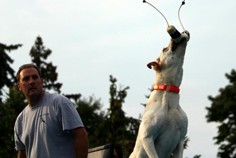 Dock Dogs at Fair-109.JPG