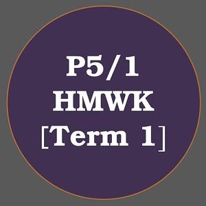 P5/1 HMWK T1