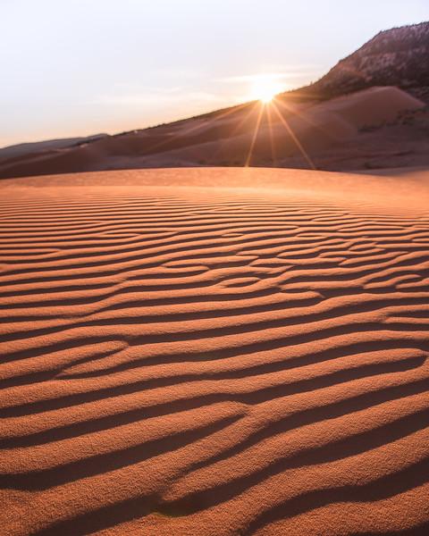 coral-dunes-cu-Elisabeth-Insta.jpg