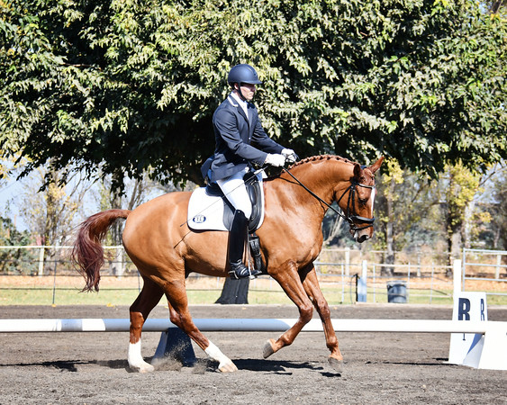 CNDC Fall Dressage Derby  Oct.31 - Nov.1
