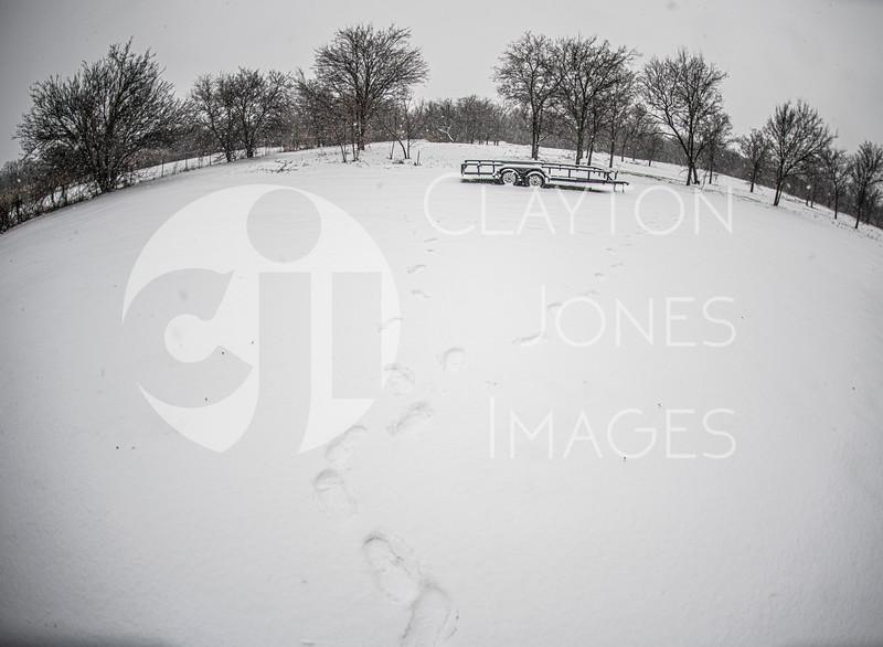 wf_backyard_snow_5.jpg