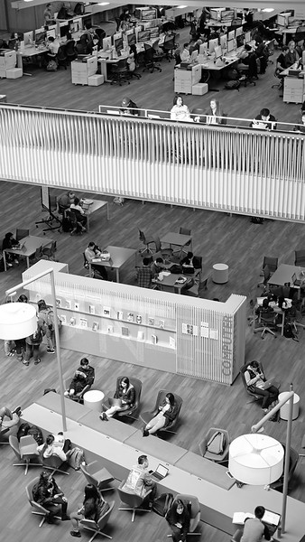 Odegaard Library 02.jpg