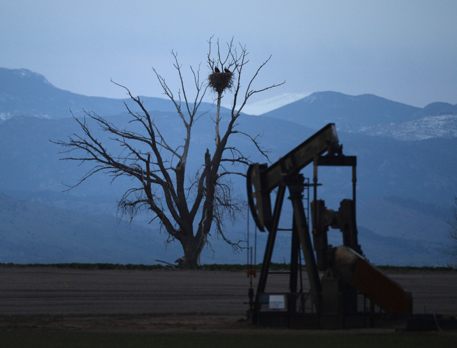 . A pair of nesting bald eagles watched night fall within sight of one of the many oil and gas rigs in Northern Colorado Tuesday evening, April 15, 2014. An area northeast of Denver holds between 3 billion to 5 billion barrels of untapped oil and oil production in Colorado has set records � 63 million barrels in 2013, up from 49 million in 2012. (Photo by Karl Gehring/The Denver Post)