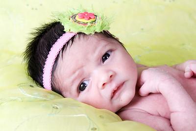 Annabelle ~ newborns
