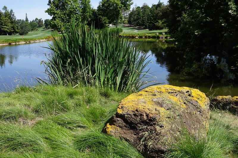 Momentum Golf Benefit-163.jpg