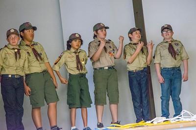 1663 Boy Scouts Blue & Gold