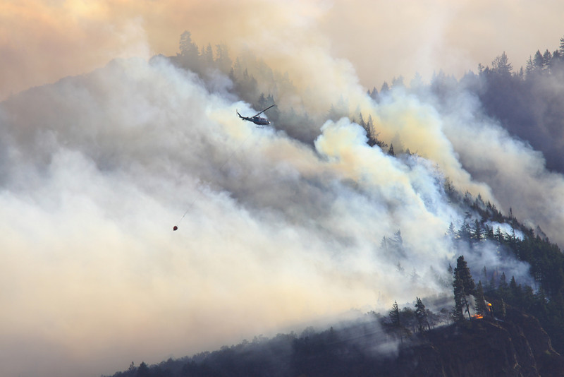forest fire-13