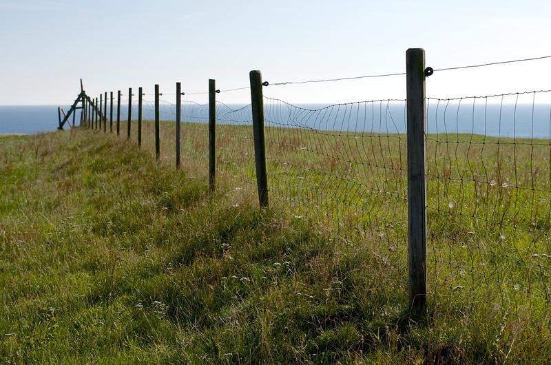 Fence At Ale Stenar