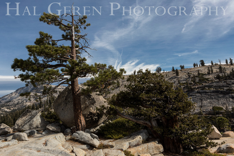 Olmstead Point Tioga Pass, California 1610S-OP2