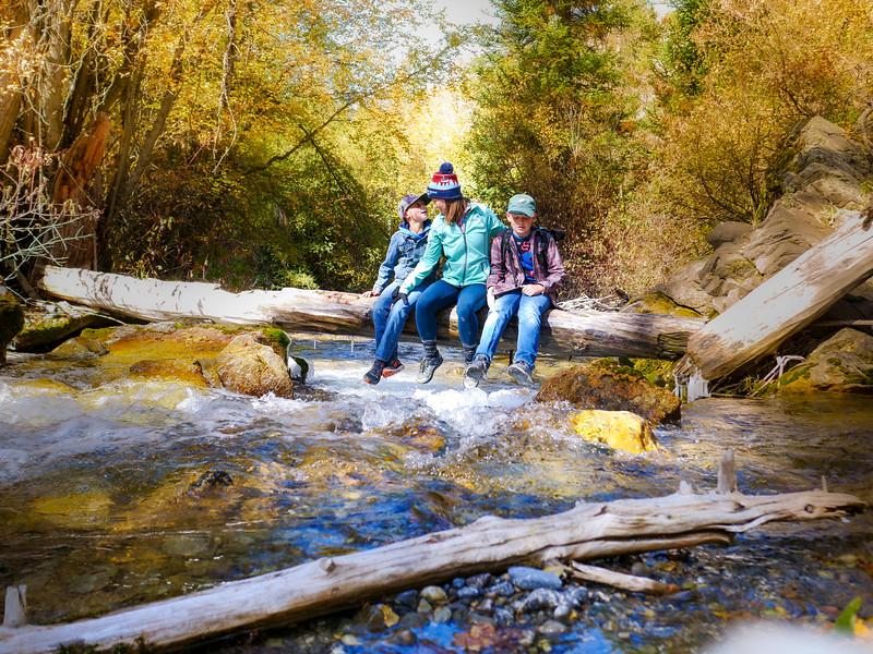 2019 Hike Creek Hike-237.jpg