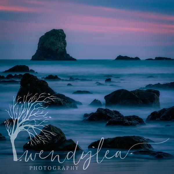 wlc Oregon Coast 032019 9812019-Edit.jpg