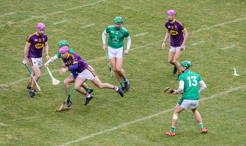 2018 Limerick vs Wexford -_8503701.jpg