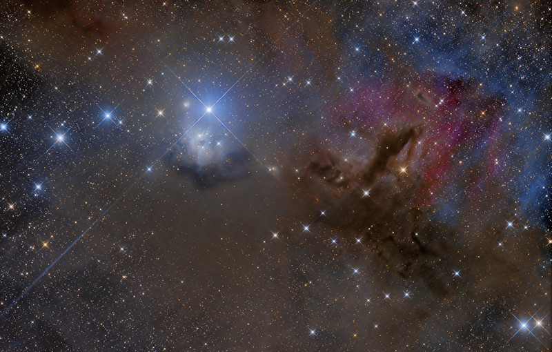 FInal Mosiac2.jpg