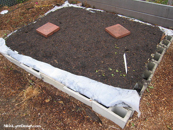 Garden Ideas Using Concrete Blocks – Simple and affordable way to make a raised garden.