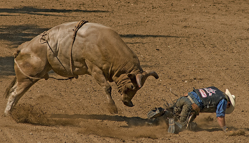 COOMBS RODEO-2009-3757A.jpg