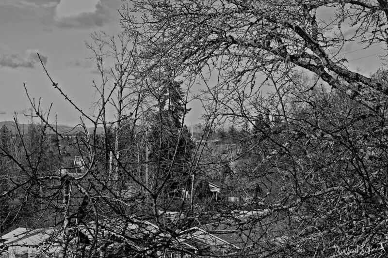 steeple   2018