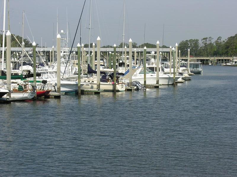 Azalea_2_Wilmington_2007_005.jpg