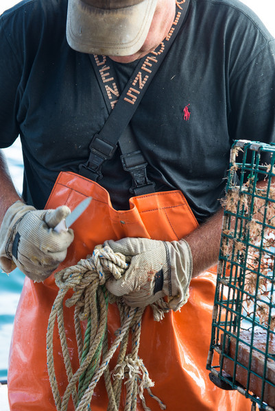 54. Lobstering, Casco Bay, Maine with Jim Buxton, August 2013.