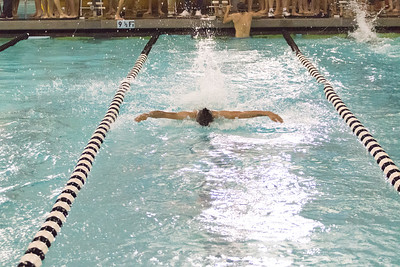 Swim  Meet