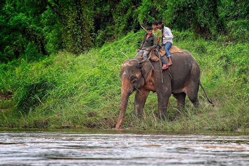 Chitwan, Nepal