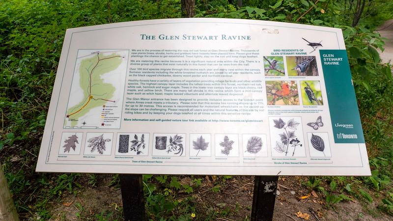 Toronto-GlenStewartPark01.jpg