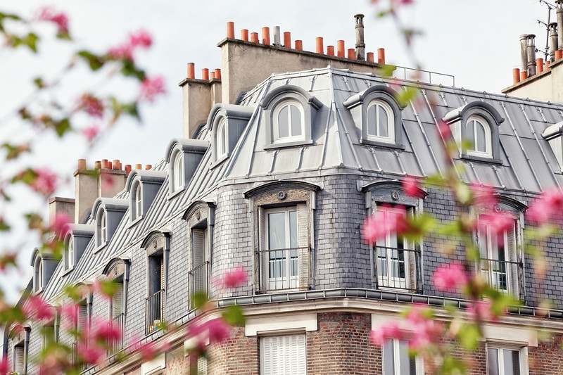 Paris Mansard Roof