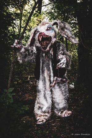2018-MMM-Bob the Bunny