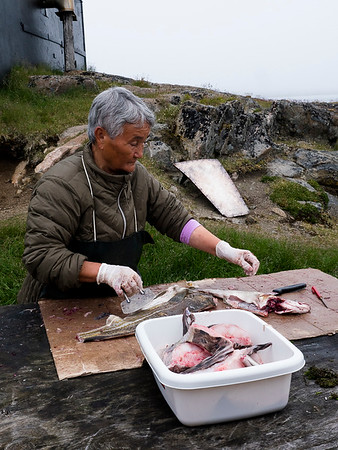 Inuit life in Kulusuk, a village with 200 inhabitants. a primary school, grocery story, church, cemetery and an airport