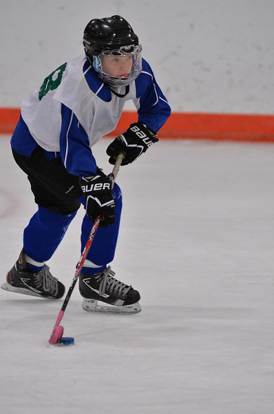Mite Lakers _ 2-14-14