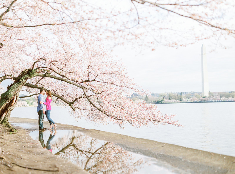 Victoria and Joe's National Mall engagement session during the Cherry Blossom Festival in Washington, DC. Engagement photos by Washington, DC's best wedding photographer Jalapeno Photography. For more on Jalapeno Photography see http://www.jalapenophotography.com