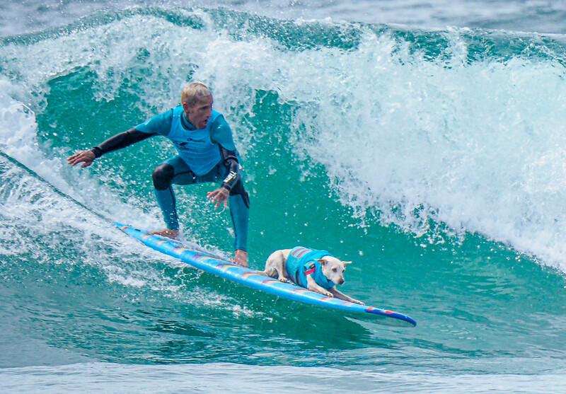 Dog_Owner_Tandem-12.jpg