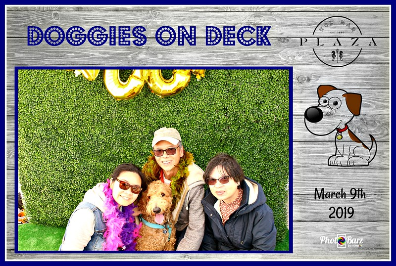 Doggys on Deck46.jpg