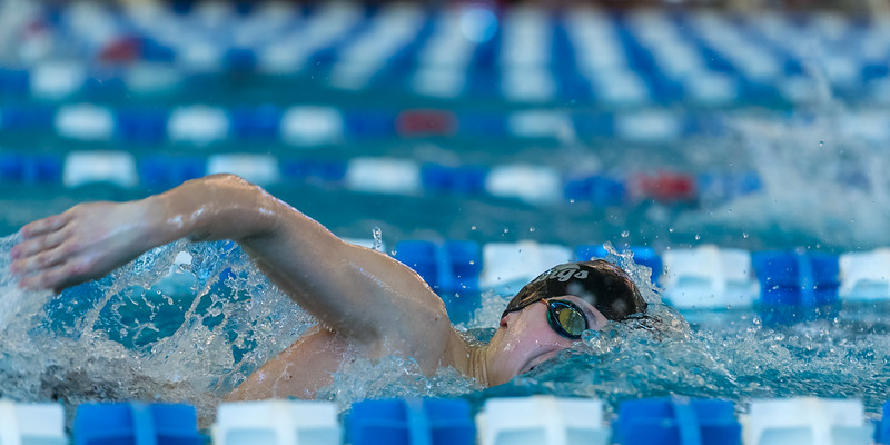 2018_KSMetz_Feb17_SHS Swimming_ State Finals_NIKON D5_5566.jpg